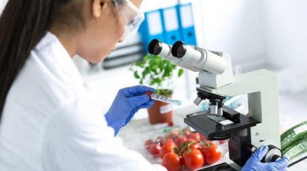 Jurusan Nutrisi dan Teknologi Pangan