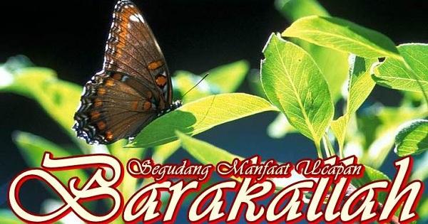 Manfaat Ucapan Barakallah fii Umrik