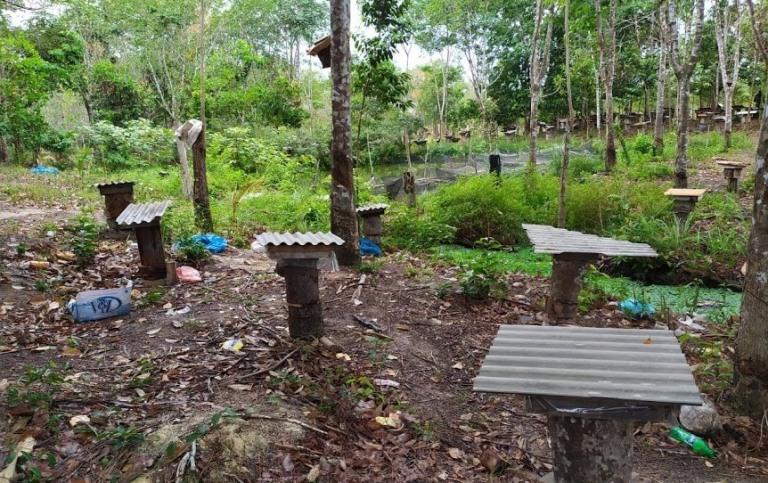 Pemilihan Lokasi Peternakan Lebah Madu