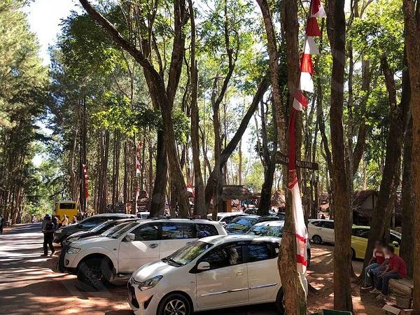 Area Parkir Hutan Pinus Mangunan