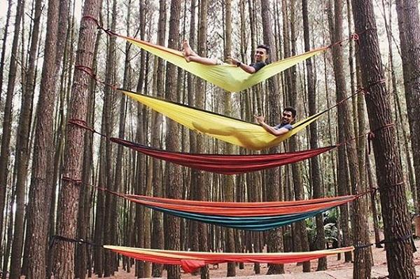 Hammock Hutan Pinus Mangunan