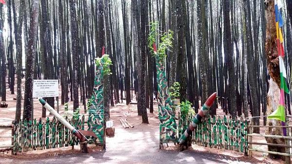 Tentang Hutan Pinus Mangunan