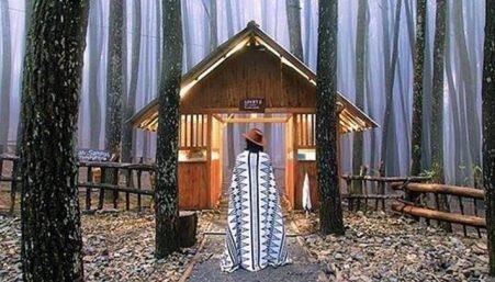 Tiket Masuk Hutan Pinus Mangunan