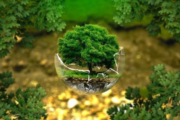 Beberapa Pengertian Lingkungan Menurut Para Ahli