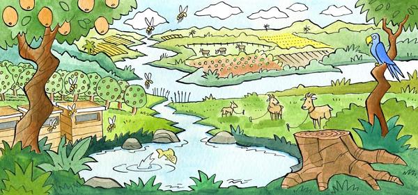 Bagaimana Cara Merawat Ekosistem