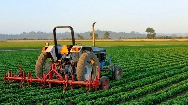 Pengertian Agribisnis secara Umum