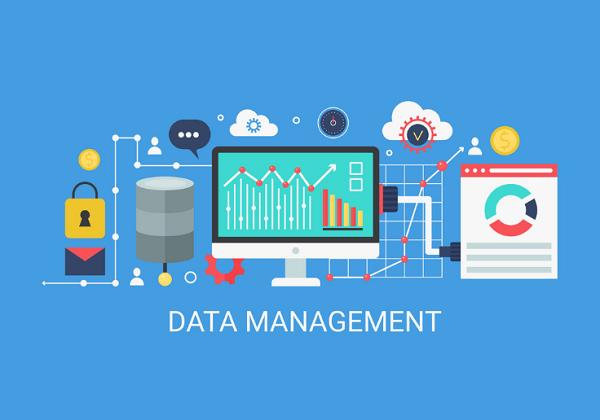 Pengertian Database Management System Menurut para Ahli